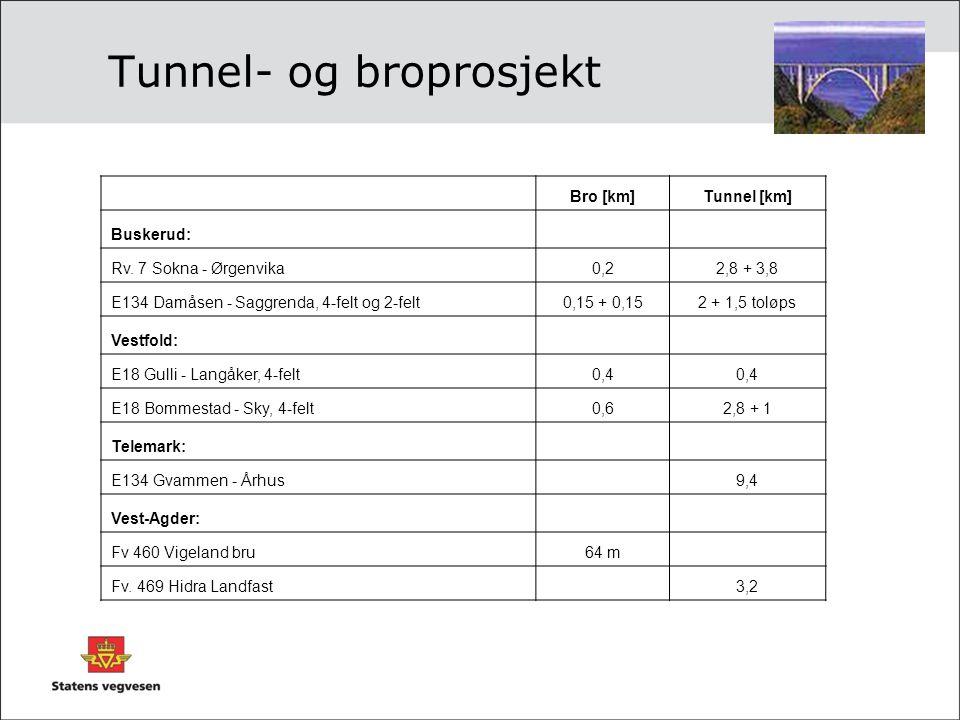 Tunnel- og broprosjekt Bro [km]Tunnel [km] Buskerud: Rv. 7 Sokna - Ørgenvika0,22,8 + 3,8 E134 Damåsen - Saggrenda, 4-felt og 2-felt0,15 + 0,152 + 1,5