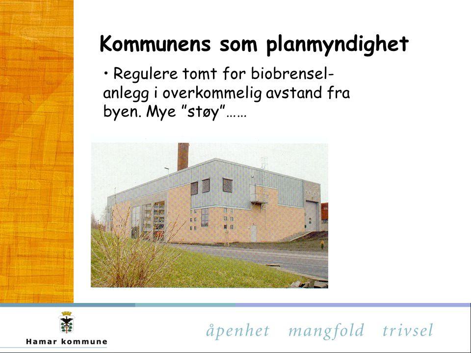 Kommunens som planmyndighet Regulere tomt for biobrensel- anlegg i overkommelig avstand fra byen.