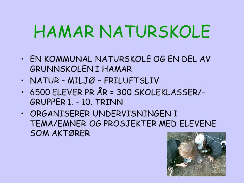 HAMAR NATURSKOLE EN KOMMUNAL NATURSKOLE OG EN DEL AV GRUNNSKOLEN I HAMAR NATUR – MILJØ – FRILUFTSLIV 6500 ELEVER PR ÅR = 300 SKOLEKLASSER/- GRUPPER 1.