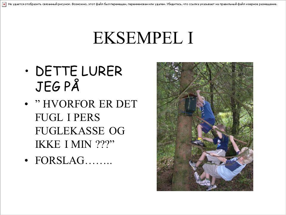 """EKSEMPEL I DETTE LURER JEG PÅ """" HVORFOR ER DET FUGL I PERS FUGLEKASSE OG IKKE I MIN ???"""" FORSLAG…….."""