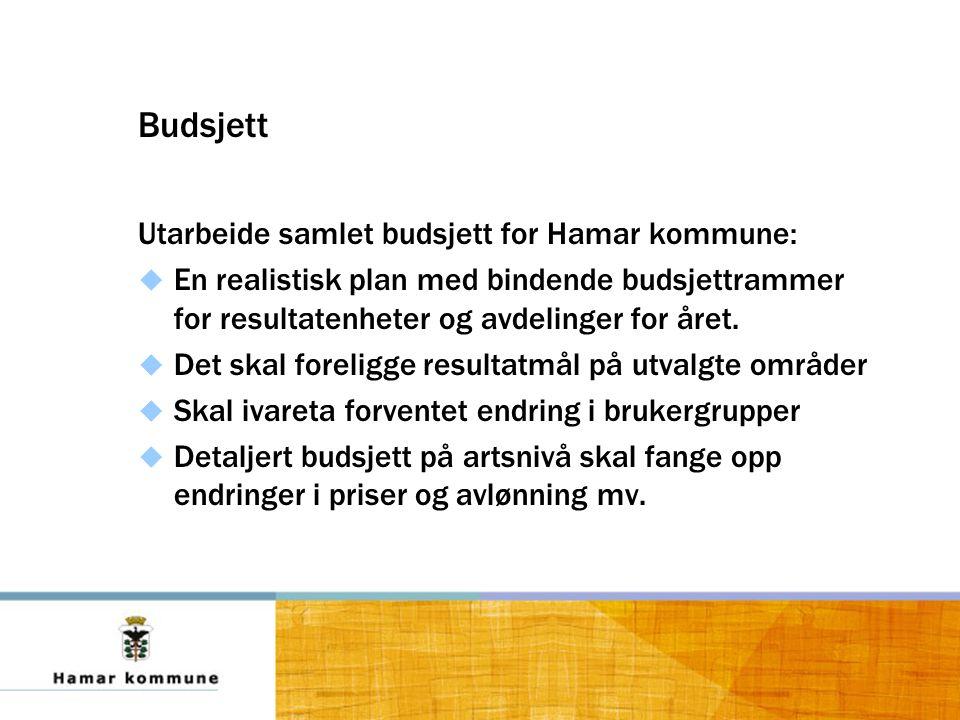 Budsjett Utarbeide samlet budsjett for Hamar kommune:  En realistisk plan med bindende budsjettrammer for resultatenheter og avdelinger for året.
