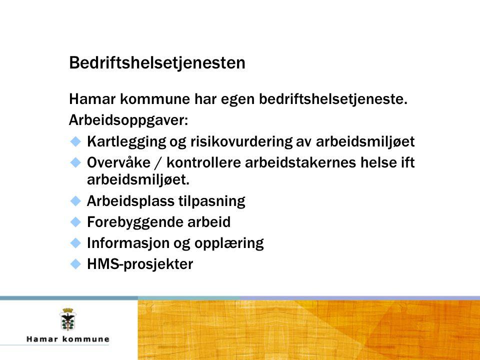 Bedriftshelsetjenesten Hamar kommune har egen bedriftshelsetjeneste.