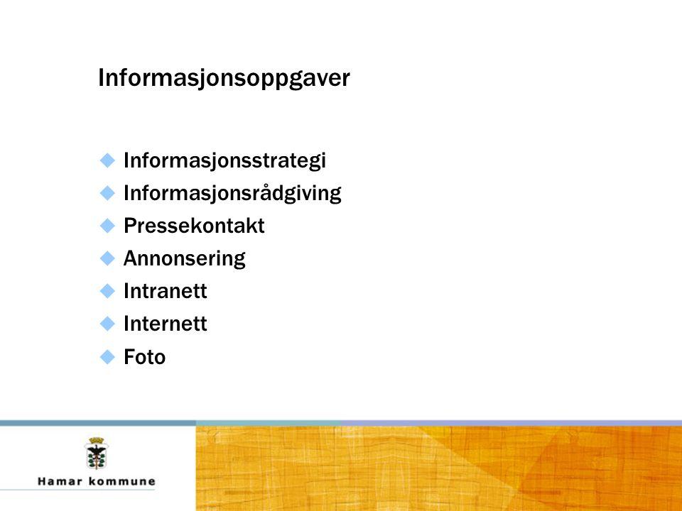 Informasjonsoppgaver  Informasjonsstrategi  Informasjonsrådgiving  Pressekontakt  Annonsering  Intranett  Internett  Foto