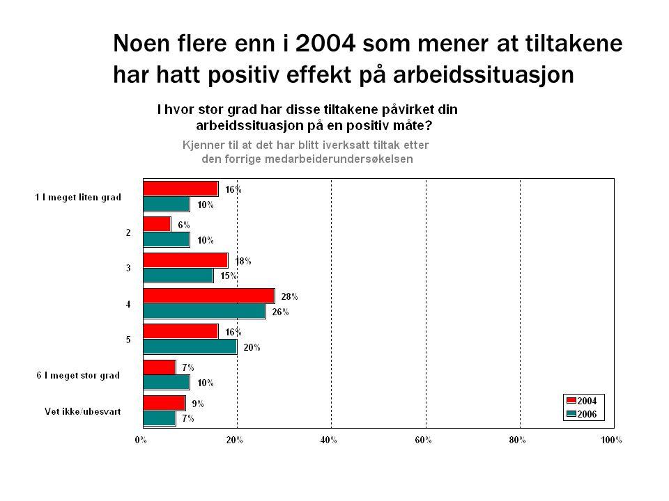 Noen flere enn i 2004 som mener at tiltakene har hatt positiv effekt på arbeidssituasjon
