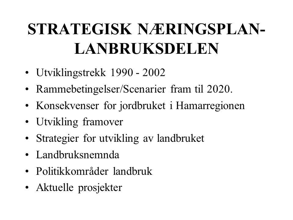 STRATEGISK NÆRINGSPLAN- LANBRUKSDELEN Utviklingstrekk 1990 - 2002 Rammebetingelser/Scenarier fram til 2020.
