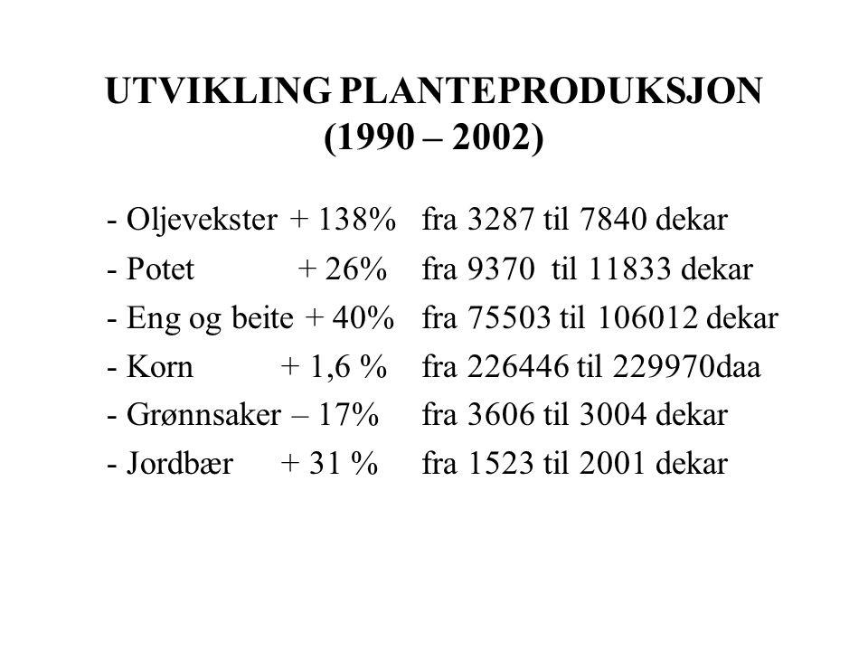 UTVIKLING PLANTEPRODUKSJON (1990 – 2002) - Oljevekster + 138% fra 3287 til 7840 dekar - Potet + 26% fra 9370 til 11833 dekar - Eng og beite + 40% fra 75503 til 106012 dekar - Korn + 1,6 % fra 226446 til 229970daa - Grønnsaker – 17% fra 3606 til 3004 dekar - Jordbær + 31 % fra 1523 til 2001 dekar