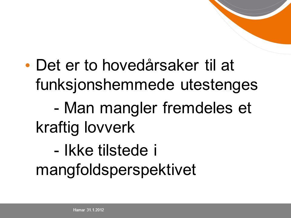Det er to hovedårsaker til at funksjonshemmede utestenges - Man mangler fremdeles et kraftig lovverk - Ikke tilstede i mangfoldsperspektivet Hamar 31.