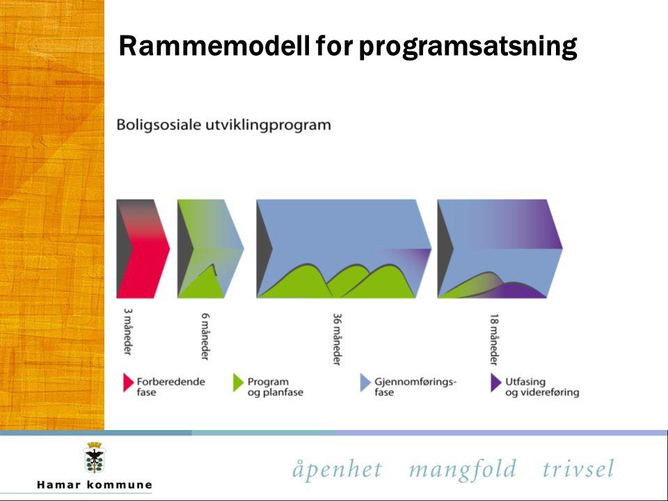 Rammemodell for programsatsning