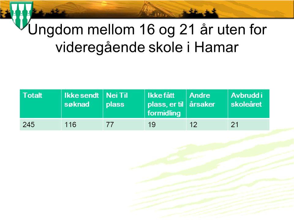 Ungdom mellom 16 og 21 år uten for videregående skole i Hamar TotaltIkke sendt søknad Nei Til plass Ikke fått plass, er til formidling Andre årsaker Avbrudd i skoleåret 24511677191221