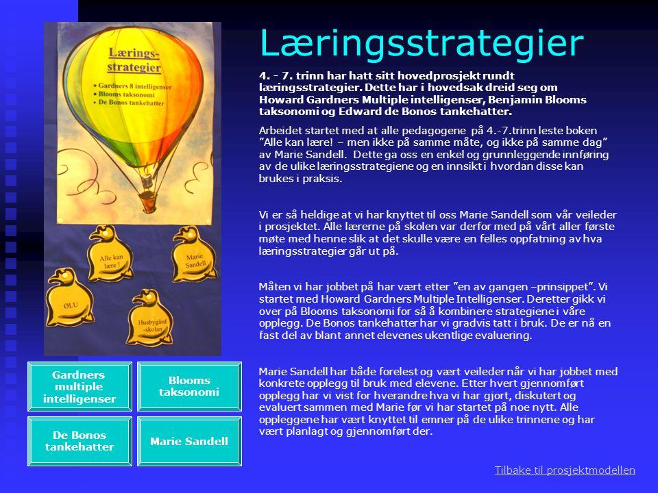 Læringsstrategier 4. - 7. trinn har hatt sitt hovedprosjekt rundt læringsstrategier. Dette har i hovedsak dreid seg om Howard Gardners Multiple intell
