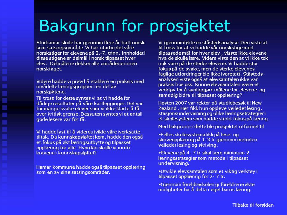 Bakgrunn for prosjektet Storhamar skole har gjennom flere år hatt norsk som satsingsområde. Vi har utarbeidet våre norskstiger for elevene på 2.-7. tr