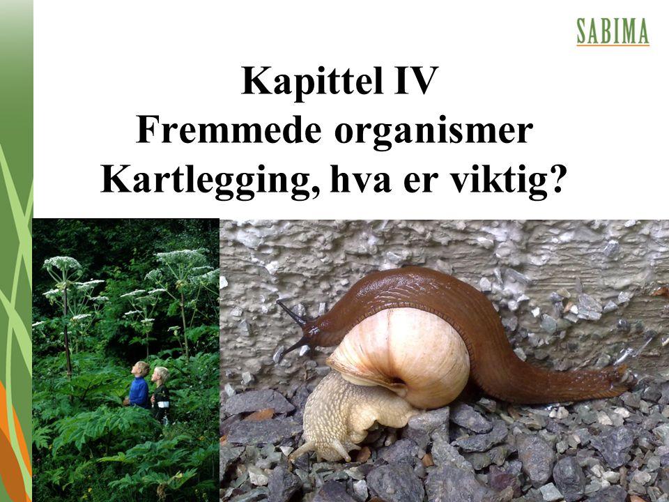 Kapittel IV Fremmede organismer Kartlegging, hva er viktig?