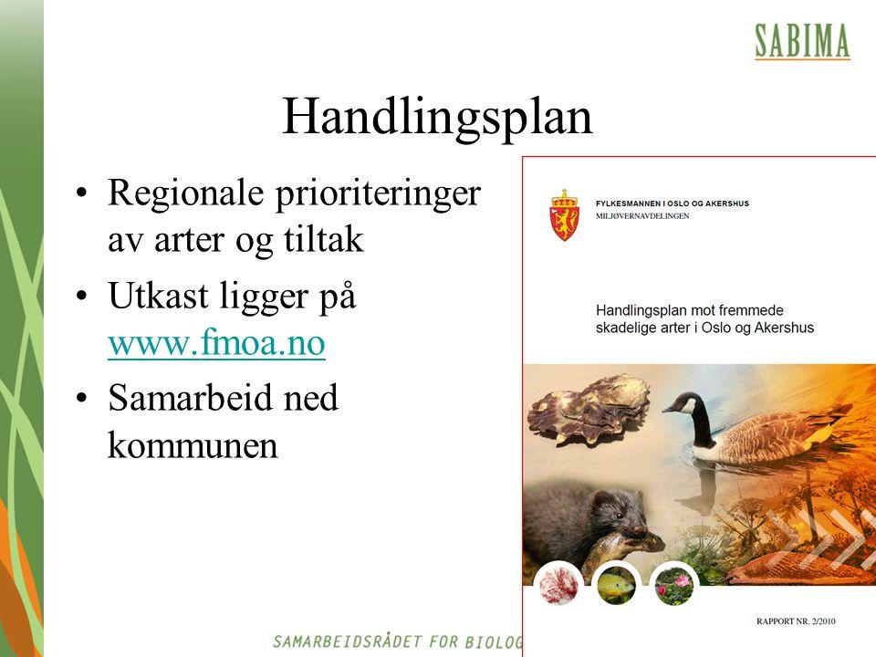 Handlingsplan Regionale prioriteringer av arter og tiltak Utkast ligger på www.fmoa.no www.fmoa.no Samarbeid ned kommunen