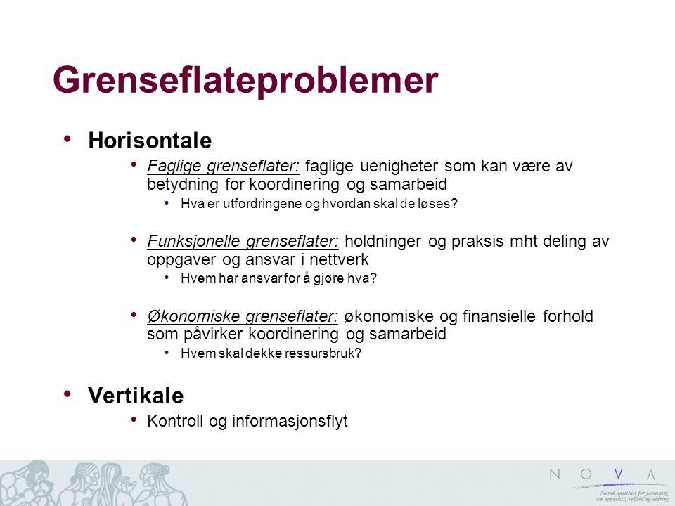Grenseflateproblemer Horisontale Faglige grenseflater: faglige uenigheter som kan være av betydning for koordinering og samarbeid Hva er utfordringene