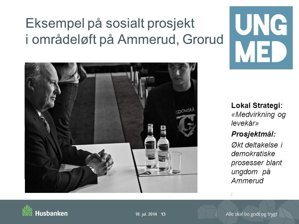 Eksempel på sosialt prosjekt i områdeløft på Ammerud, Grorud 18.
