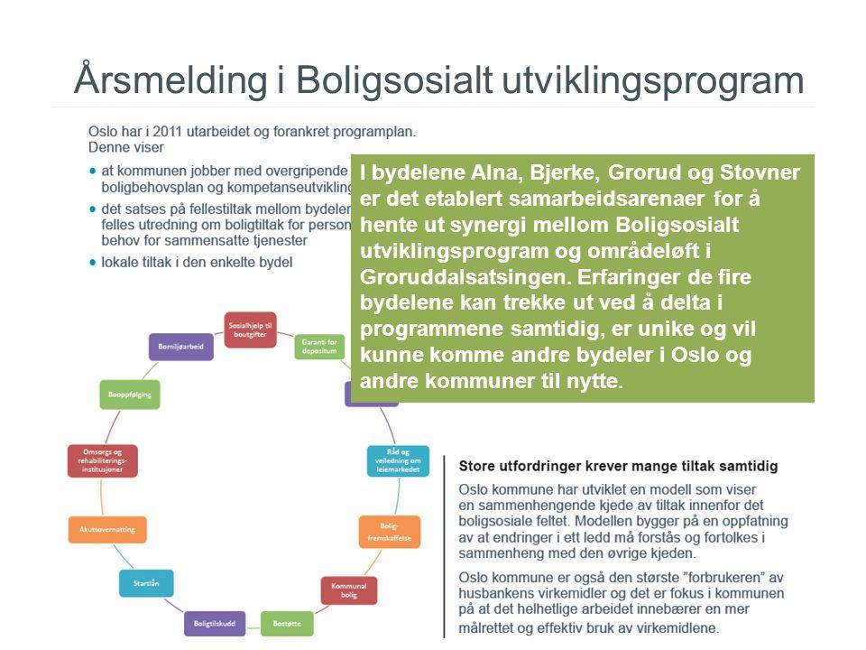 Årsmelding i Boligsosialt utviklingsprogram I bydelene Alna, Bjerke, Grorud og Stovner er det etablert samarbeidsarenaer for å hente ut synergi mellom Boligsosialt utviklingsprogram og områdeløft i Groruddalsatsingen.
