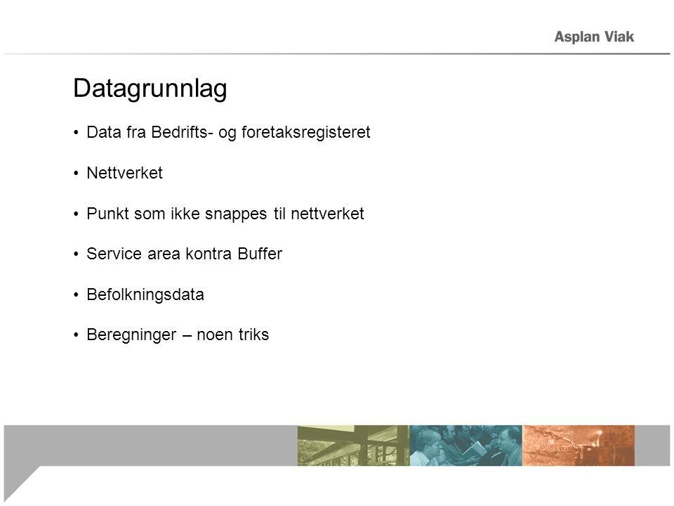 Datagrunnlag Data fra Bedrifts- og foretaksregisteret Nettverket Punkt som ikke snappes til nettverket Service area kontra Buffer Befolkningsdata Beregninger – noen triks