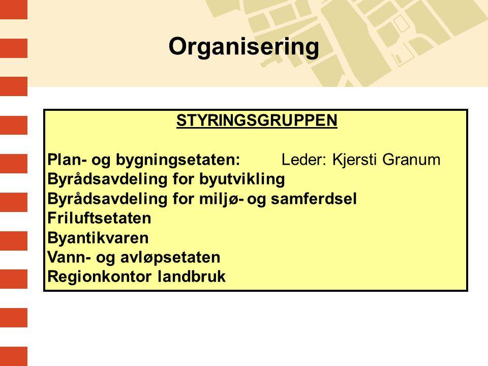 Organisering STYRINGSGRUPPEN Plan- og bygningsetaten: Leder: Kjersti Granum Byrådsavdeling for byutvikling Byrådsavdeling for miljø- og samferdsel Fri