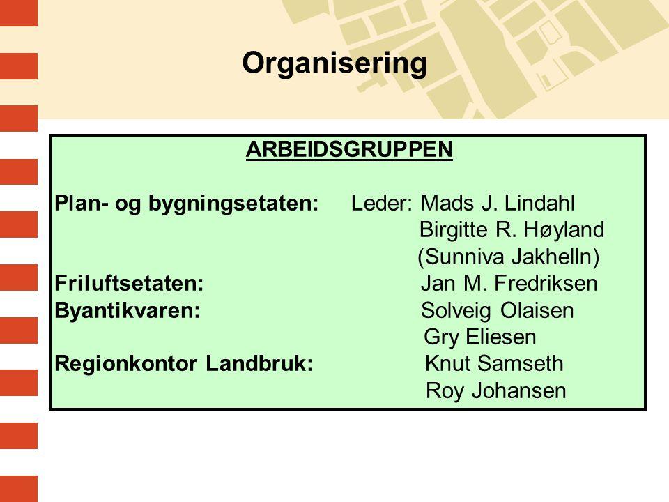 ARBEIDSGRUPPEN Plan- og bygningsetaten: Leder: Mads J. Lindahl Birgitte R. Høyland (Sunniva Jakhelln) Friluftsetaten: Jan M. Fredriksen Byantikvaren: