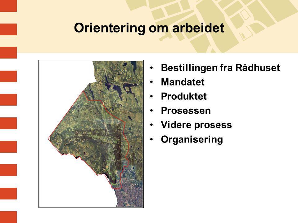Orientering om arbeidet Bestillingen fra Rådhuset Mandatet Produktet Prosessen Videre prosess Organisering