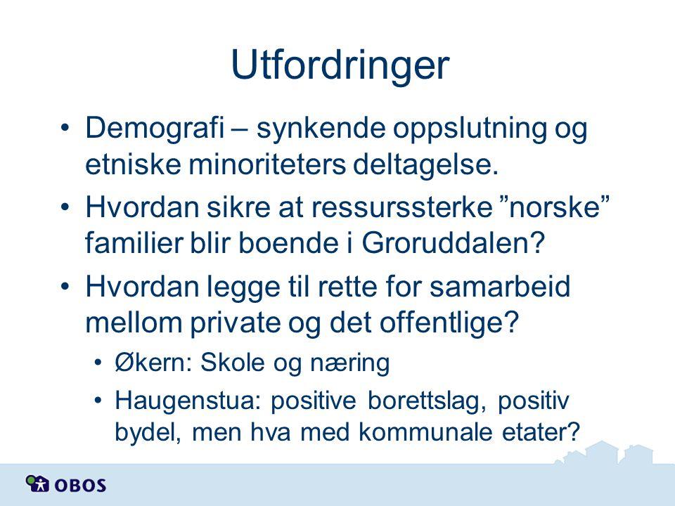 "Utfordringer Demografi – synkende oppslutning og etniske minoriteters deltagelse. Hvordan sikre at ressurssterke ""norske"" familier blir boende i Groru"