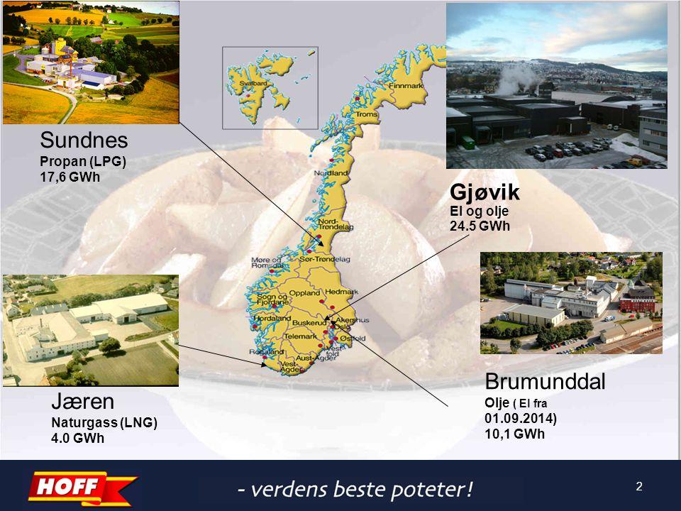 2 Gjøvik El og olje 24.5 GWh Sundnes Propan (LPG) 17,6 GWh Jæren Naturgass (LNG) 4.0 GWh Brumunddal Olje ( El fra 01.09.2014) 10,1 GWh