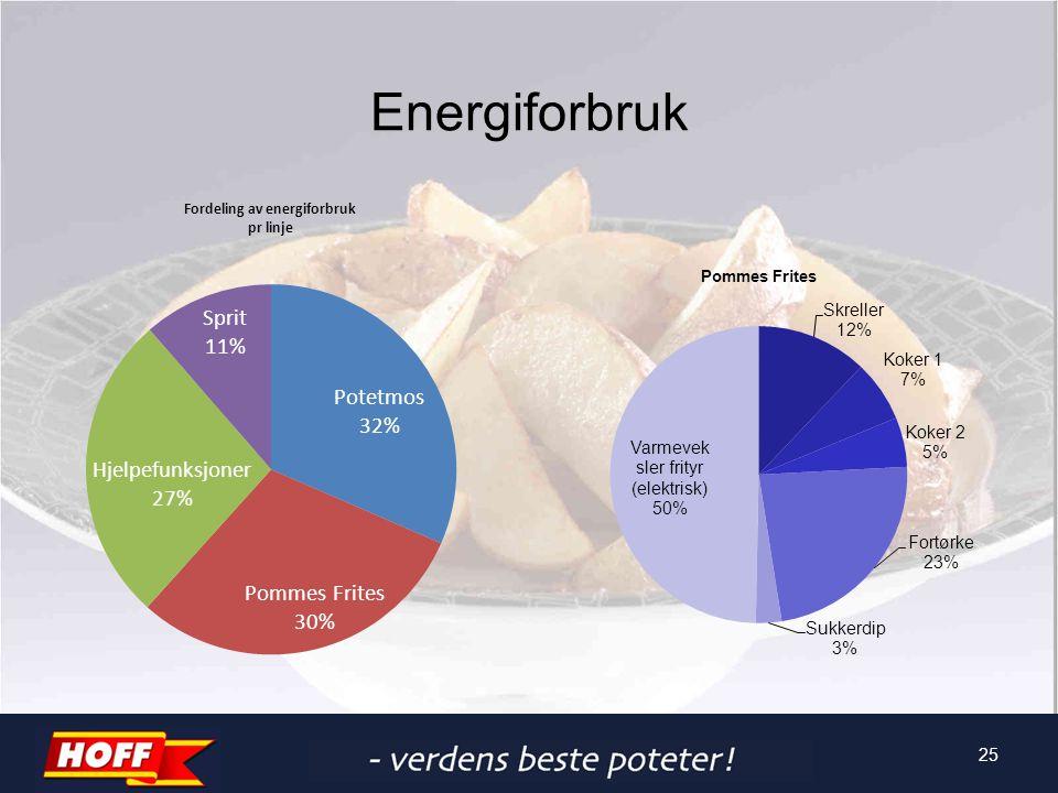 Energiforbruk 25