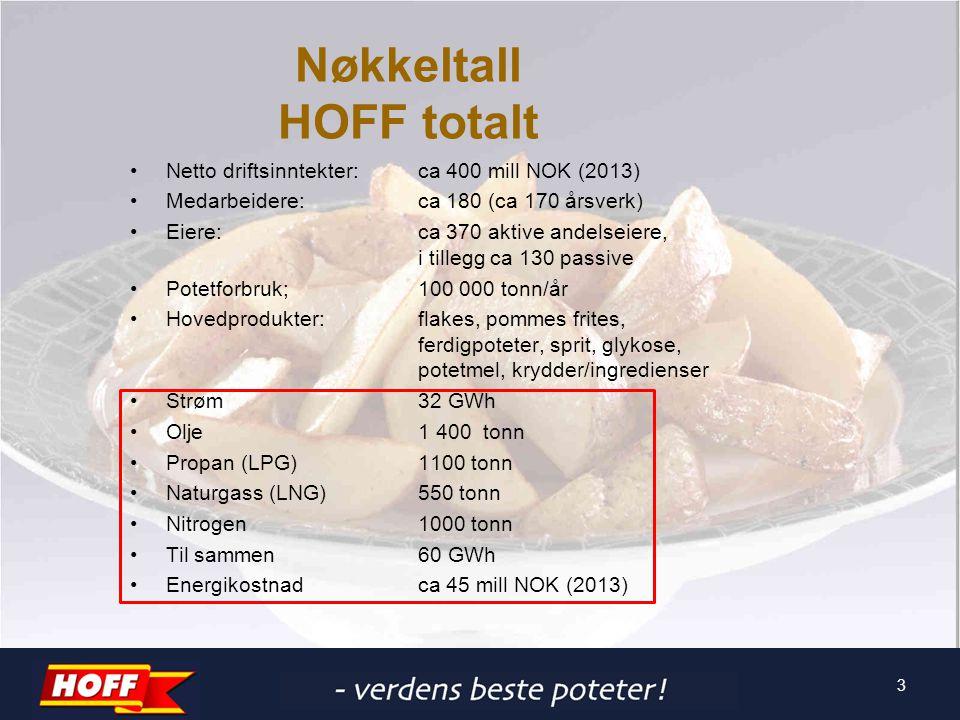 3 Nøkkeltall HOFF totalt Netto driftsinntekter:ca 400 mill NOK (2013) Medarbeidere:ca 180 (ca 170 årsverk) Eiere:ca 370 aktive andelseiere, i tillegg