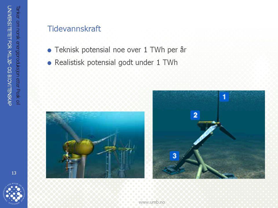 UNIVERSITETET FOR MILJØ- OG BIOVITENSKAP www.umb.no Tanker om norsk energiproduksjon etter Peak oil 13 Tidevannskraft  Teknisk potensial noe over 1 T