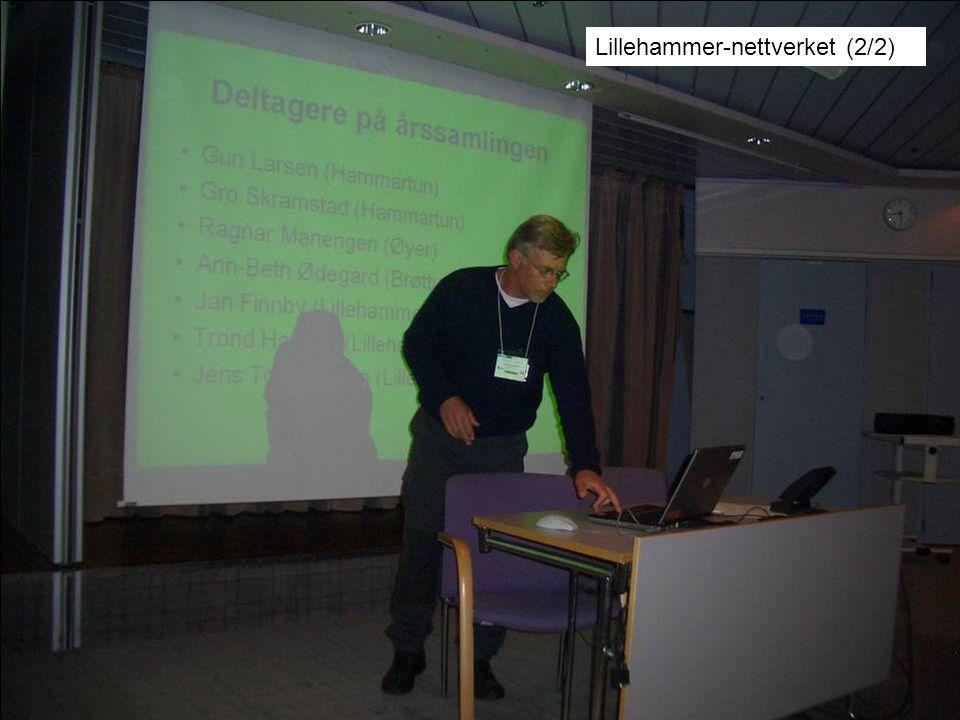 Lillehammer-nettverket (2/2)