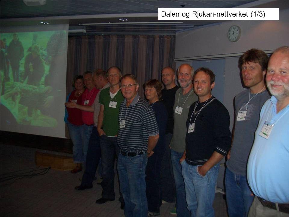 Dalen og Rjukan-nettverket (1/3)