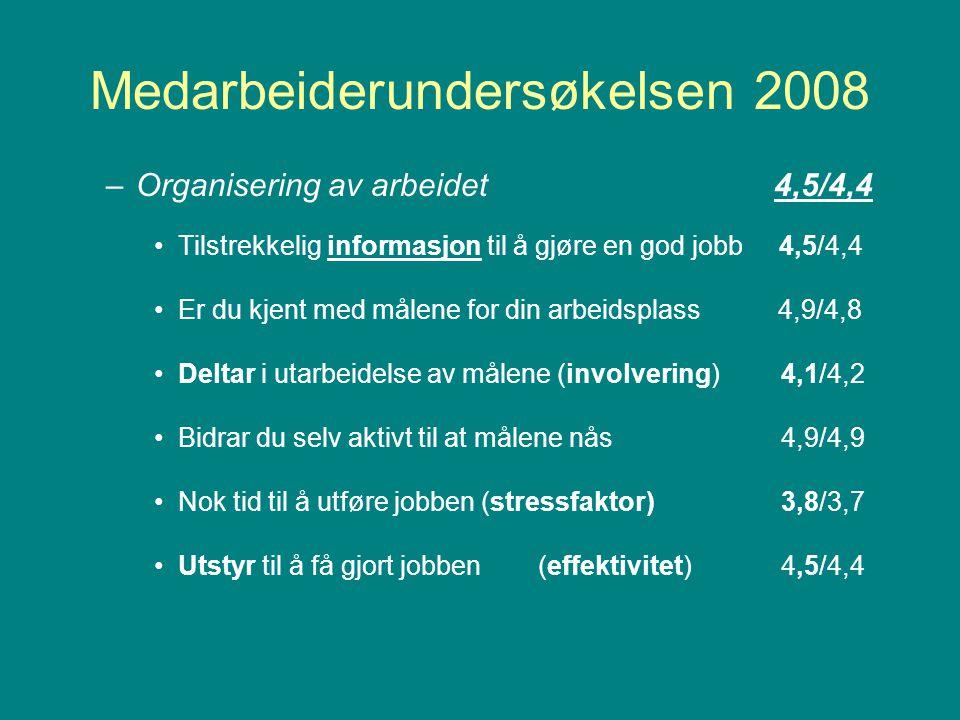 Medarbeiderundersøkelsen 2008 –Organisering av arbeidet 4,5/4,4 Tilstrekkelig informasjon til å gjøre en god jobb 4,5/4,4 Er du kjent med målene for din arbeidsplass 4,9/4,8 Deltar i utarbeidelse av målene (involvering) 4,1/4,2 Bidrar du selv aktivt til at målene nås 4,9/4,9 Nok tid til å utføre jobben (stressfaktor) 3,8/3,7 Utstyr til å få gjort jobben(effektivitet) 4,5/4,4