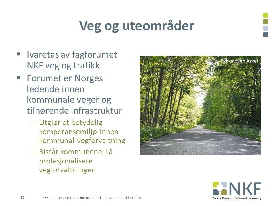 Veg og uteområder  Ivaretas av fagforumet NKF veg og trafikk  Forumet er Norges ledende innen kommunale veger og tilhørende infrastruktur – Utgjør e