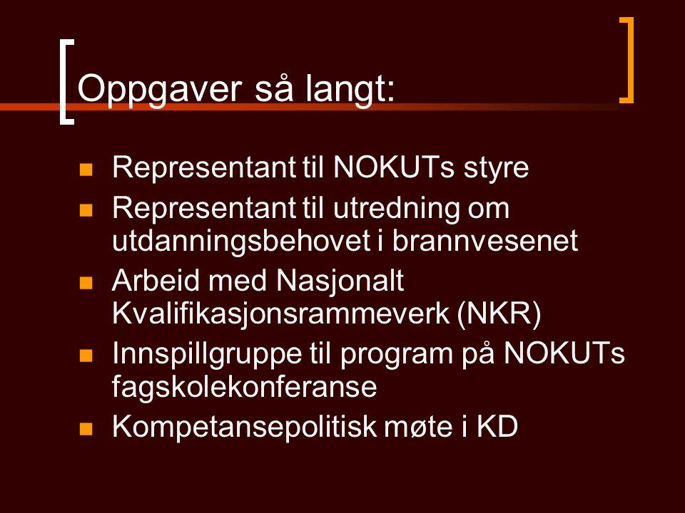 Oppgaver så langt: Representant til NOKUTs styre Representant til utredning om utdanningsbehovet i brannvesenet Arbeid med Nasjonalt Kvalifikasjonsram