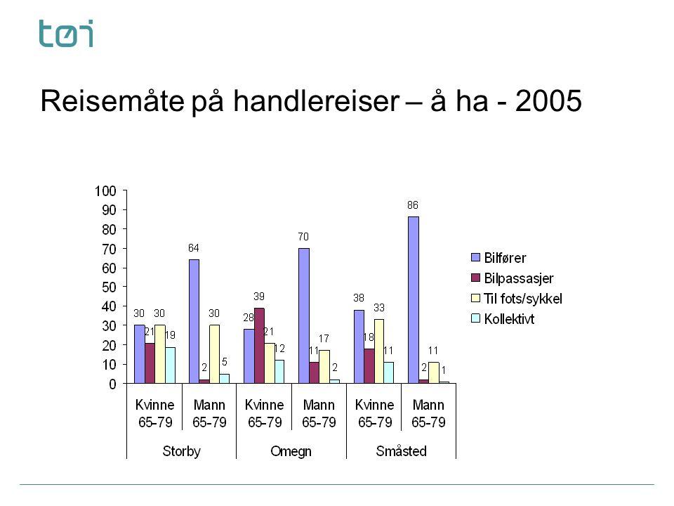 Reisemåte på handlereiser – å ha - 2005