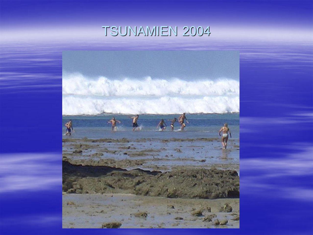 TSUNAMIEN 2004