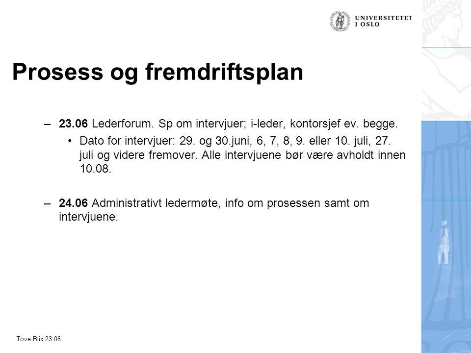 Tove Blix 23.06 Prosess og fremdriftsplan –Representanter fra evalueringsutvalget, OPA og ØPA vil bli intervjuet så snart som mulig –26.