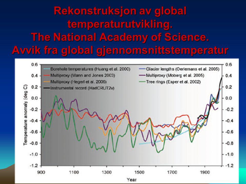 Rekonstruksjon av global temperaturutvikling. The National Academy of Science. Avvik fra global gjennomsnittstemperatur