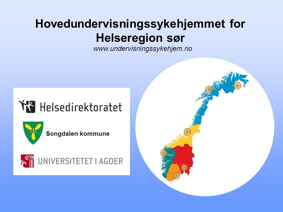 Hovedundervisningssykehjemmet for Helseregion sør www.undervisningssykehjem.no Songdalen kommune