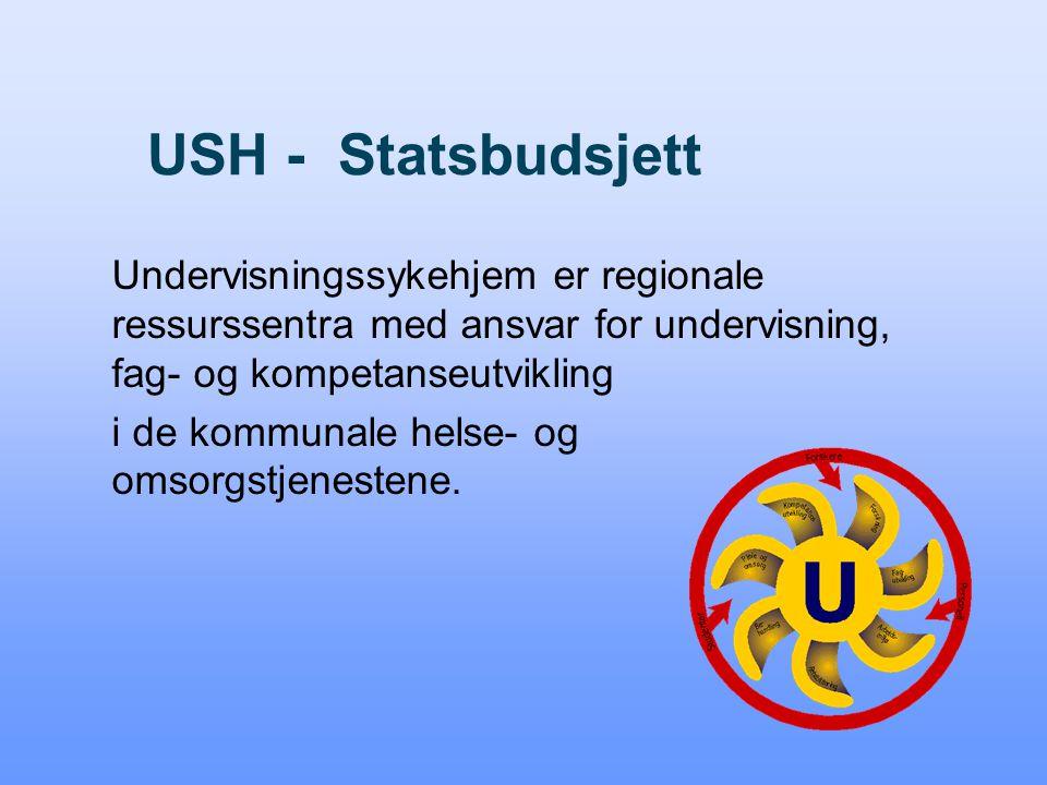 USH - Statsbudsjett Undervisningssykehjem er regionale ressurssentra med ansvar for undervisning, fag- og kompetanseutvikling i de kommunale helse- og omsorgstjenestene.
