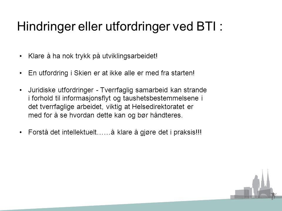 Hindringer eller utfordringer ved BTI : Klare å ha nok trykk på utviklingsarbeidet! En utfordring i Skien er at ikke alle er med fra starten! Juridisk
