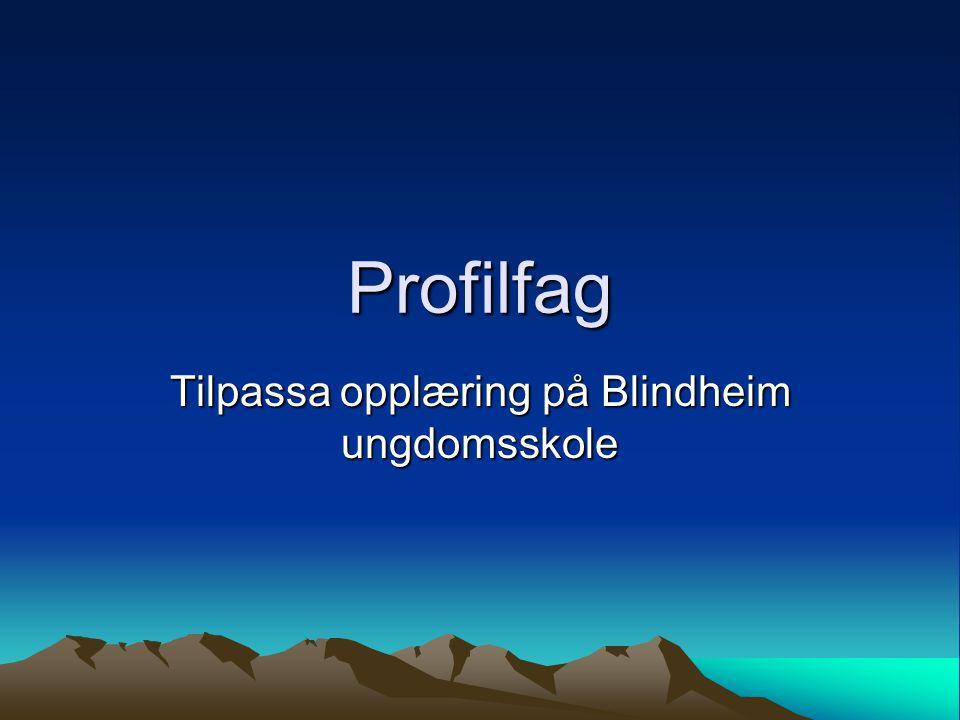 Profilfag Tilpassa opplæring på Blindheim ungdomsskole