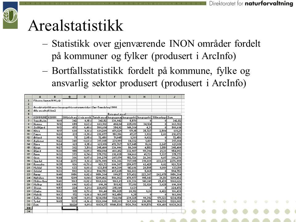 Arealstatistikk –Statistikk over gjenværende INON områder fordelt på kommuner og fylker (produsert i ArcInfo) –Bortfallsstatistikk fordelt på kommune,