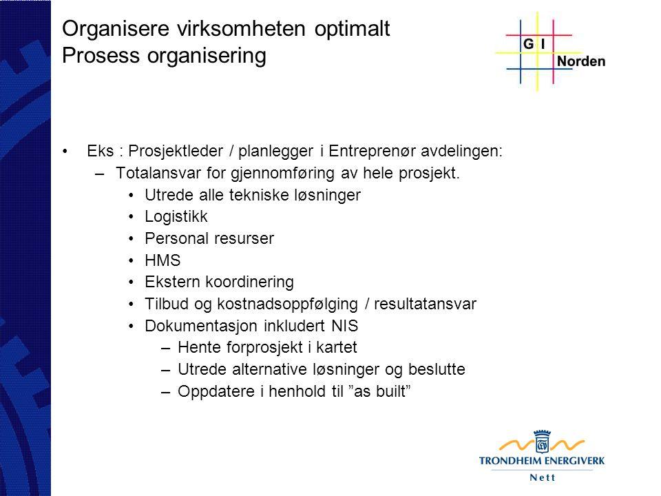 Organisere virksomheten optimalt Prosess organisering Eks : Prosjektleder / planlegger i Entreprenør avdelingen: –Totalansvar for gjennomføring av hel
