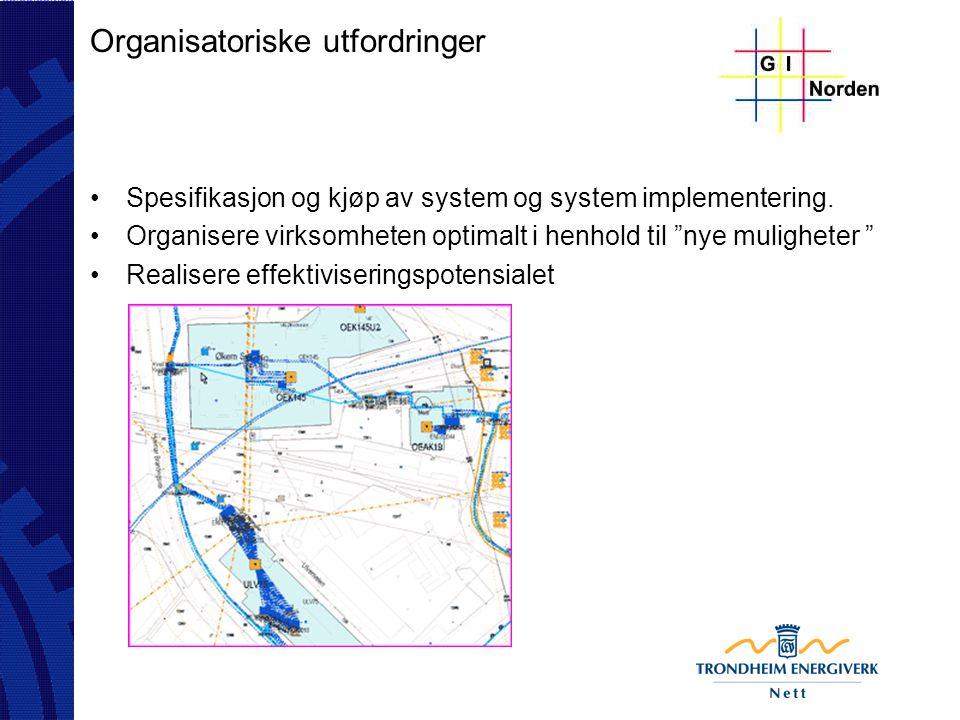 """Organisatoriske utfordringer Spesifikasjon og kjøp av system og system implementering. Organisere virksomheten optimalt i henhold til """"nye muligheter"""