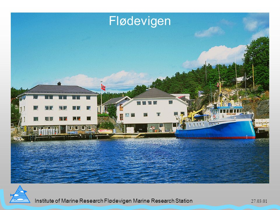 Institute of Marine Research Flødevigen Marine Research Station 27.03.01 Flødevigen Flødevigen bilde Flødevigen