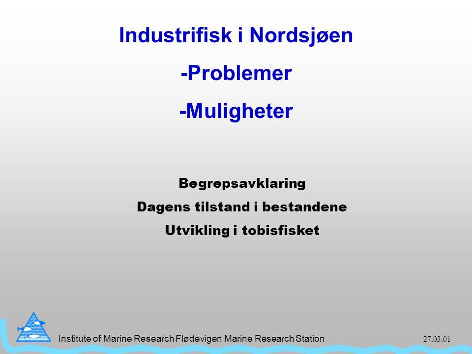 Institute of Marine Research Flødevigen Marine Research Station 27.03.01 Tittel Industrifisk i Nordsjøen -Problemer -Muligheter Title Begrepsavklaring Dagens tilstand i bestandene Utvikling i tobisfisket