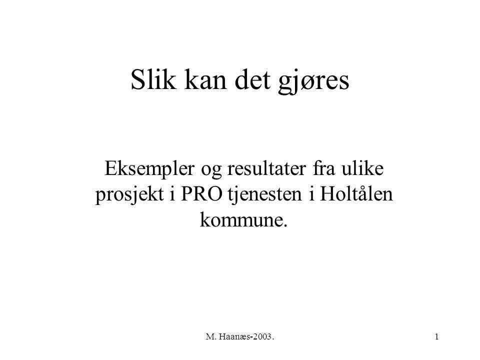 M. Haanæs-2003.1 Slik kan det gjøres Eksempler og resultater fra ulike prosjekt i PRO tjenesten i Holtålen kommune.