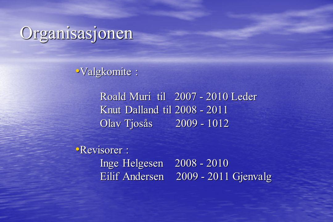Valgkomite : Valgkomite : Roald Muri til 2007 - 2010 Leder Knut Dalland til 2008 - 2011 Olav Tjosås 2009 - 1012 Revisorer : Revisorer : Inge Helgesen