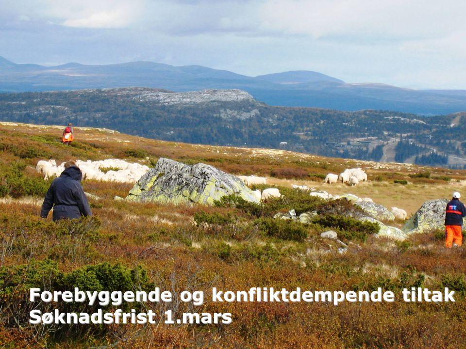 Forebyggende og konfliktdempende tiltak Søknadsfrist 1.mars